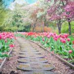 Śliczny ,a także schludny ogród to zasługa wielu godzin spędzonych  w jego zaciszu w trakcie pielegnacji.